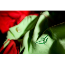 Evolution fleece green